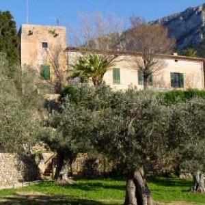 Panorama actuel du monastère de Miramar, entre Deià et Valldemossa, où Lulle fonda la première école de missionnaires en 1276.